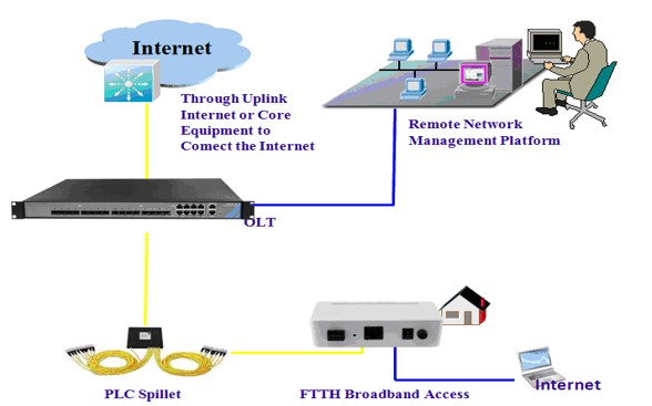 Teamly Digital TDOZ100 Network Overview